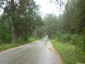 sosnovaja_alleya_2